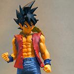 Luffy Style Son Gokou